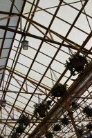 Green Houses 5 by Prue126