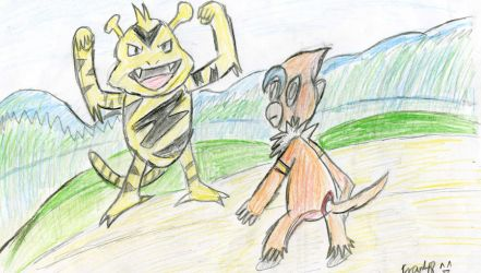 Electabuzz and Monferno by Fran48