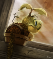 DAY 164. Turtwig (30 Minutes)