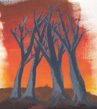 Dead trees after sunset by jeromy-huber