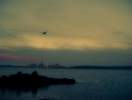 Fly By by ksouth