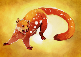 A Salty Quoll by Limecrumble