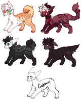 Dog adopts closed by Tacowi