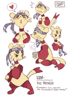Lin Charactersheet by fu-fighters