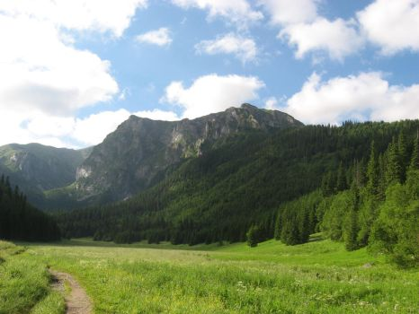 Valley in the Tatra Mountains by PolishTank48
