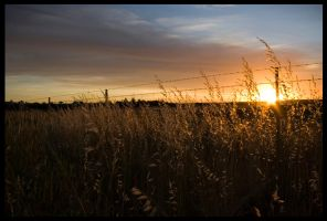 sunsets_in_dubbo_003 by kymw