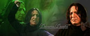 Severus Banner by EverythingMagic