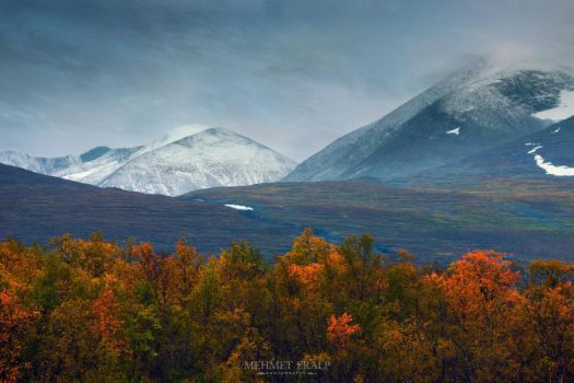 Fall in Abisko by m-eralp