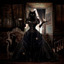 The Lady Cat by Selenys
