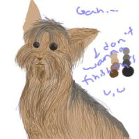 mom's dog again by all4dracome49