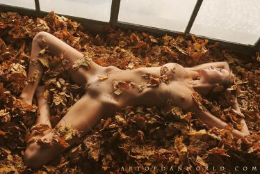 Autumn Leaves by ArtofdanPhotography