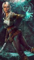 Ciri's Story: The King of the Wolves by Silvaticus