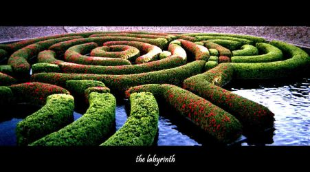 The Labyrinth by California-Club