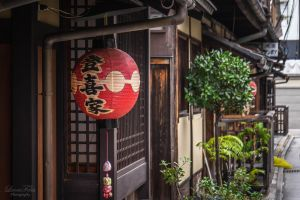 Lantern in Kyoto by LunaFeles