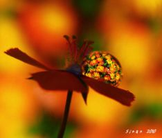 power of love 2 of 4 by sinanTR