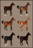 closed left Yearling Adopts - Simple colors by Lone-Onyx-Stardust