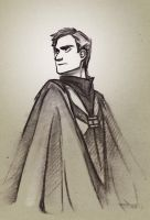 Harry Potter ~ Viktor Krum by zarin-a