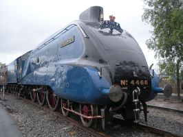 Mallard at Railfest 2012 by rlkitterman