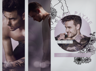 Photopack 27585 -Liam Payne by southsidepngs