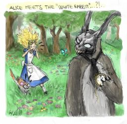 Alice meets the White Rabbit by EllisonPav