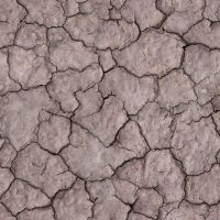 Seamless Cracked Dirt by cfrevoir