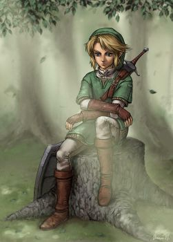 New Link by paintpixel