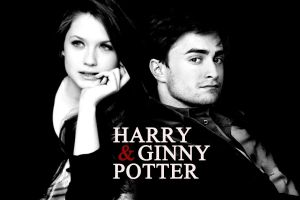 Harry and Ginny 3 by iloveSweetTangerine