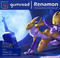 Gumroad _ Renamon Redraw by playfurry