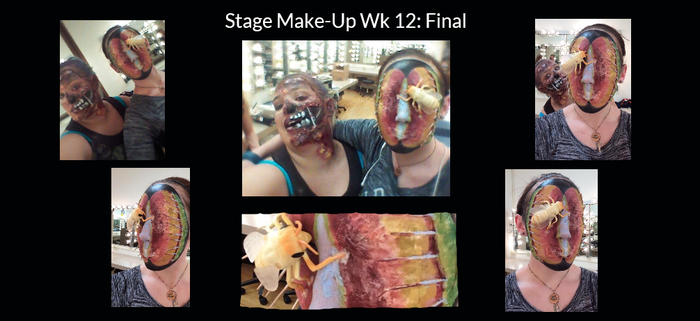 Stage Make-Up Wk 12 by Lady-Ceridwen