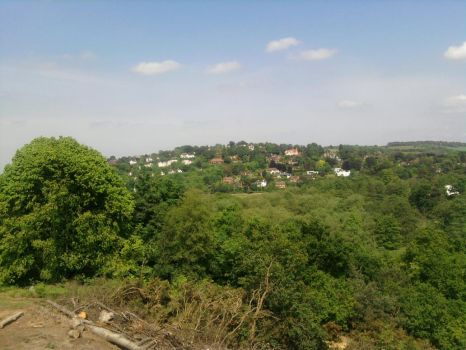 Guildford St catherines hill. by Skunk-Mantra