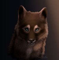 My oc wolf (Daksu) fanart. by moondaneka