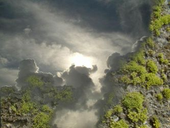 Clouds and moss by kitsolidor
