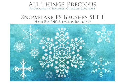 Snowflake Photoshop Brushes by AllThingsPrecious
