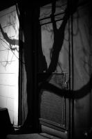 Shadow Play by PhillyPuddy