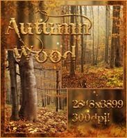Autumn Wood free backgrounds by moonchild-ljilja