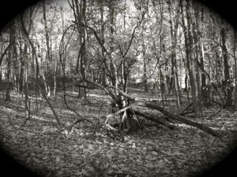 Worcester Woods 13 by scarygirl67