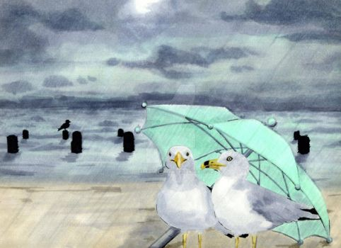 Clever Seagulls by thestrangequark