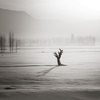 Stand up to winter by etchepare