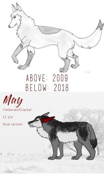 Improvement #2 by Nymerie