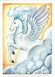 Pegasus ACEO by starwoodarts