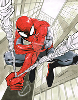 Spiderman by DRPR