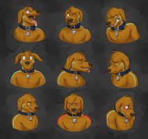 Commission: Munchypaws Expression Sheet by Temiree
