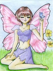 Fairy and Butterfly by flowerlou