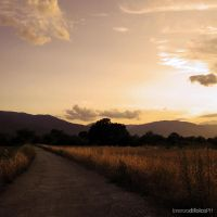 Countryside Sunset XIII by LorenzoDiFolco