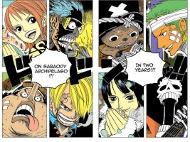 One Piece -In Two Years- by Lemon-Crazy