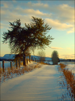 Last Light on First Snow by wb-skinner