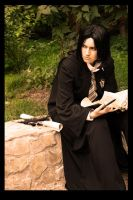 HP-Half-Blood prince by love-squad