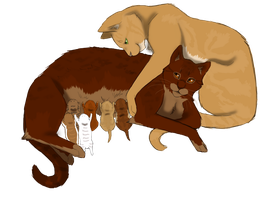 RedXLion family by Lithestep