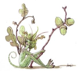 The Acorn Faery by maina