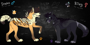 Drake and Riley - Sibling Ref Sheet by ReneahArt